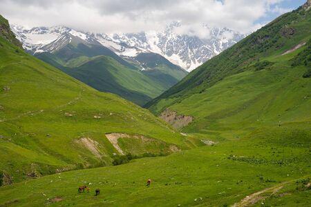 Beautiful landscape of Ushguli village in summer season in Svaneti region, Georgia, Asia 版權商用圖片