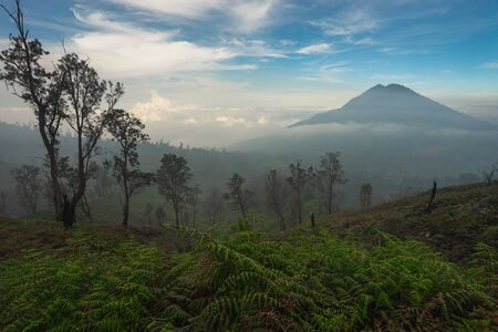 Beautiful mountain and forest along the way to Kawah Ijen crater, east Java in Indonesia, Asia