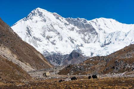 Cho Oyu mountain peak, sixth highest mountain peak in the world view from Gokyo village. Himalaya mountains range in Nepal, Asia