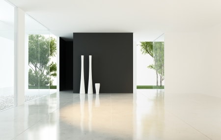 Modern Design Empty Living Room with Vases