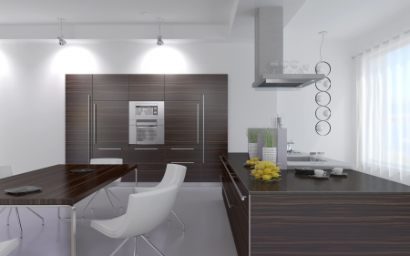 Modern Design Kitchen Interior Stock Photo - 19532892