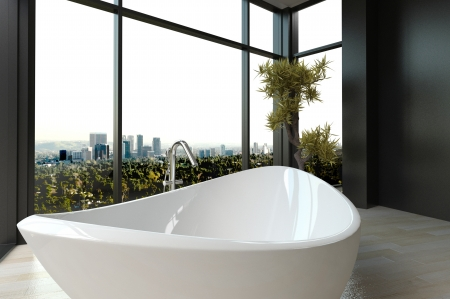 black and white plant: Expensive luxury bathtub against panoramic window with city view