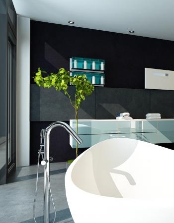 Contemporary bathroom interior with black wall Stock Photo - 23064739