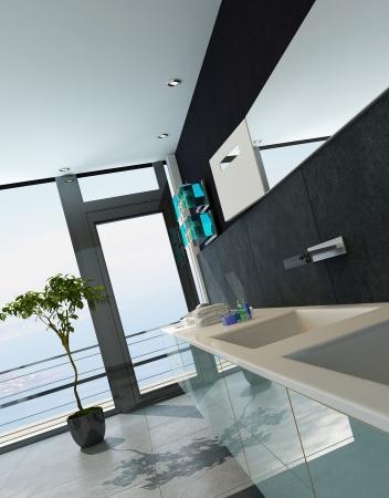 Contemporary design bathroom interior in black color Stock Photo - 23064775