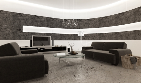 view of an elegant living room: Black and white living room interior