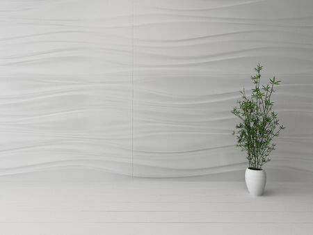houseplant: Picture of empty white room interior with houseplant Stock Photo