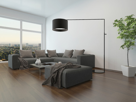Living room interior with gray couch, coffe table and floor lamp Stock Photo