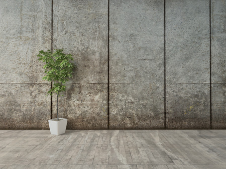 Grunge decor interieur met betonnen muur en bloempot