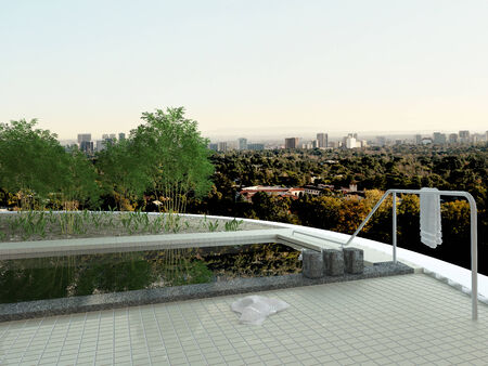 Picture of rooftop swiming pool with cityscape view photo