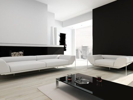 fireplace living room: Modern contemporary black and white living room interior