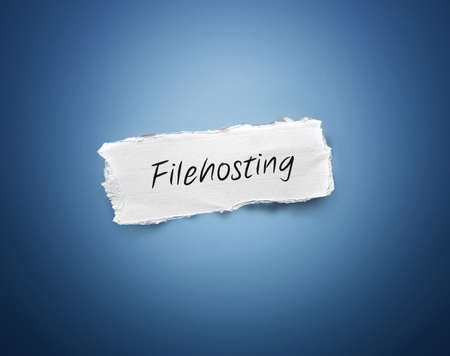data distribution: Word - Filehosting - written on a torn rectangular scrap of white paper on a blue background with a vignette