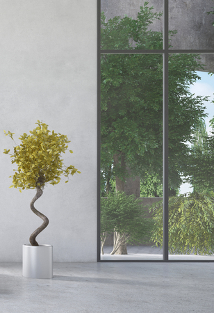 Potted plant inf front of concrete wall and huge floor-to-ceiling window in a modern airy room photo