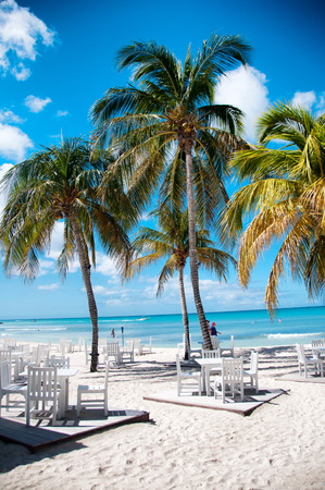 aruba: Idyllic summer outdoor beach restaurant in Aruba, Caribbean with white painted wooden tables and chairs standing on decks on fresh white sand under tropical palms alongside a calm blue sea