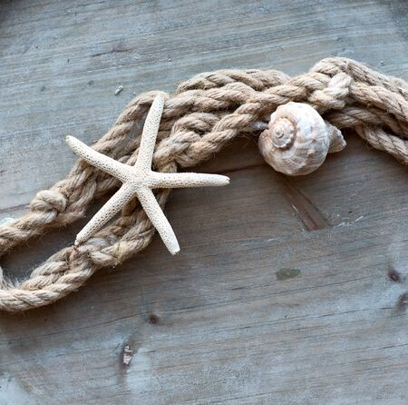Maritime with Seashell and with Rope on wooden as seen from above Stock Photo