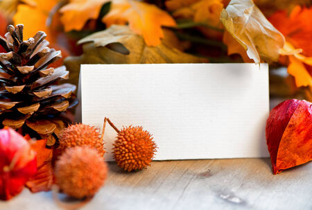 place card: Still Life of Blank Place Card Amongst Autumn Foliage Stock Photo