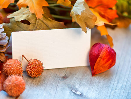amongst: Still Life of Blank Place Card Amongst Autumn Foliage Stock Photo