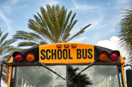 commercial tree service: Close Up of Front of Yellow School Bus with Palm Trees  Stock Photo