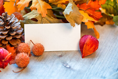 Still Life of Blank Place Card Amongst Autumn Foliage photo