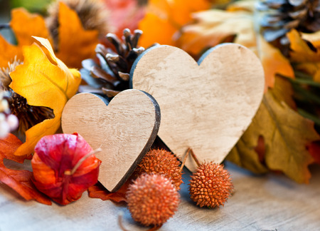 amongst: Still Life of Two Wooden Hearts Amongst Autumn Foliage