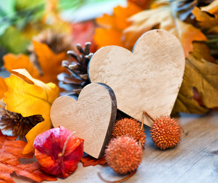 Two handcrafted wooden hearts in an autumn background surrounded by colorful fall leaves, gooseberries and balls off the plane tree symbolic of love and romance photo
