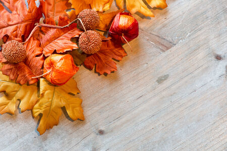 Autumn Leaves and Chinese Lanterns on Wooden Surface with Copyspace as seen from Above photo