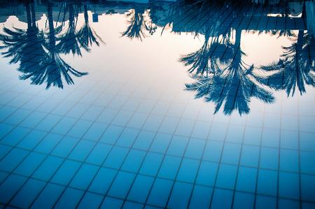 reflexion: Reflexiones de palmeras en las tranquilas aguas azules de una piscina conceptuales de las vacaciones de verano tropicales y viajes Foto de archivo