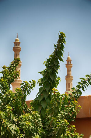 Tree Branches in front of El Mina Mosque Minarets in Hurghada, Egypt photo