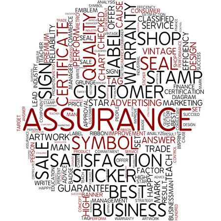 Word cloud - assurance
