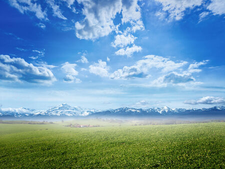clear skies: Green pastures on a sunny day