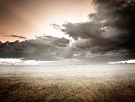 distant: Dark clouds above a field of dried grass Stock Photo