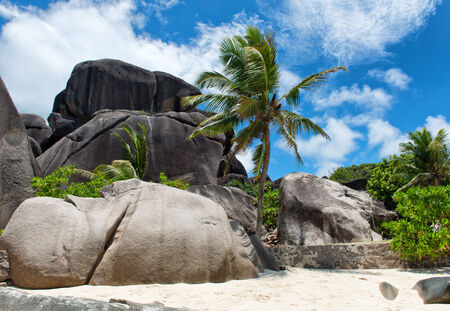 d argent: Grandi rocce View at Anse Source d Argent Isola di La Digue Seychelles. Una meta incantevole Tourist.