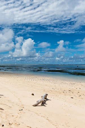 union beach: Scenic of Driftwood on Anse Union Beach, La Digue, Seychelles Stock Photo
