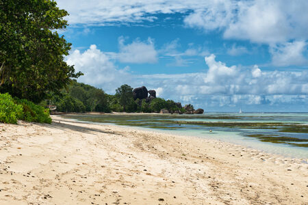 union beach: Peaceful Waterfront with White Beach Sand and Green Trees Under the Heat of the Sun at the Beautiful Anse Union Lagoon in La Digue Island, Seychelles