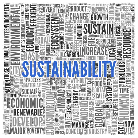 impact: Close up Blue SUSTAINABILITY Text at the Center of Word Tag Cloud on White Background.