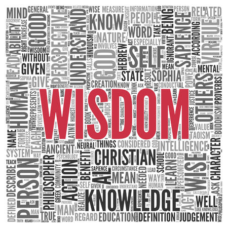 sapience: Large Red Wisdom Text with Other Related Words in Gray in Word Tag Cloud on White Background. Stock Photo