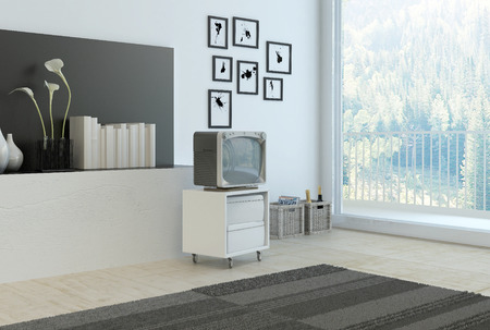 cabinet: Simple living room corner with grey and white decor with a wall recess with books , flowers and vases, a rug, cabinet and old style television set and artwork with a large floor to ceiling window