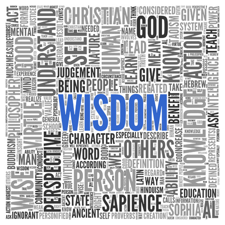 sapience: Blue Wisdom Text with Other Related Words in Gray in Word Tag Cloud Design on White Background. Stock Photo
