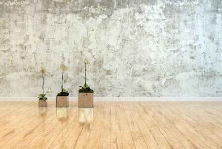 polished wood: Tre orchidee in vaso con riflessi in piedi in una linea su un pavimento di legno lucido di fronte a un muro grigio macchiato chiazzato con spazio per la progettazione degli arredi interni o copia Archivio Fotografico