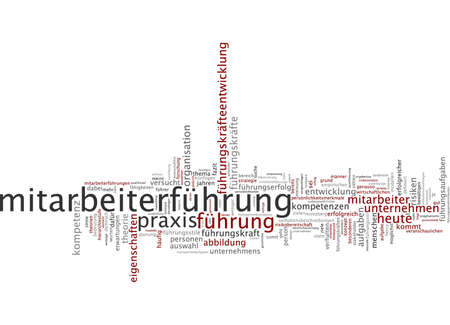 Word cloud of leadership in German language Stock Photo - 33999471