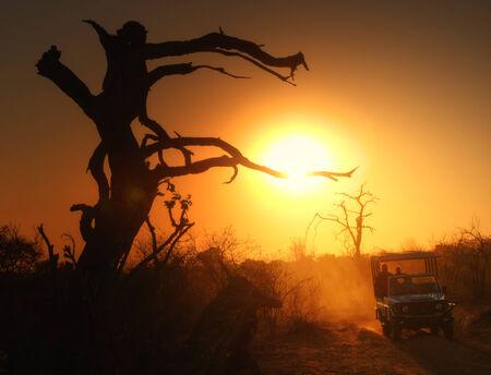 chobe national park: Travellers in Chobe National Park, Botswana, Africa