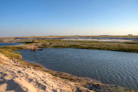 chobe national park: Landscape in Chobe National Park, Botswana, Africa