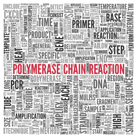 Close up Red POLYMERASE CHAIN REACTION Text at the Center of Word Tag Cloud on White Background.