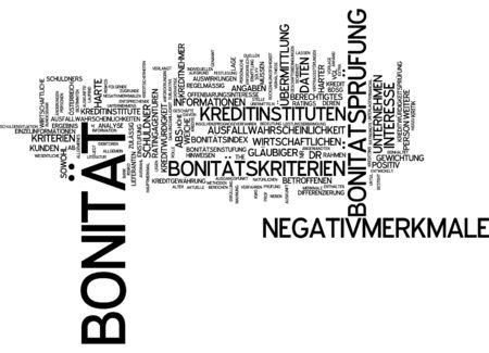 validity: Nube de palabras - solvencia