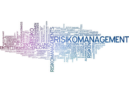 extent: Word cloud - risk management