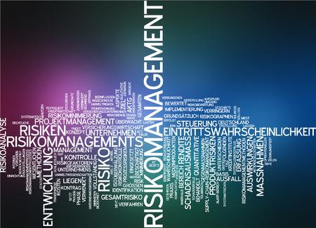 extent: Word cloud - risk management