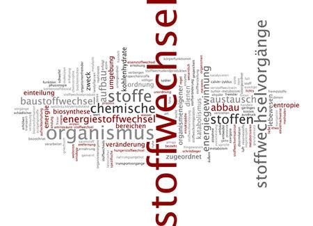 metabolism: Word cloud - metabolism