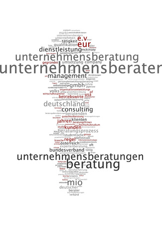 consultancy: Word cloud - management consultant Stock Photo