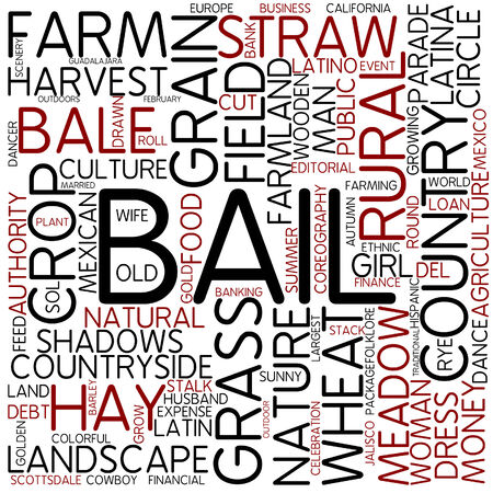 Word cloud - bail photo
