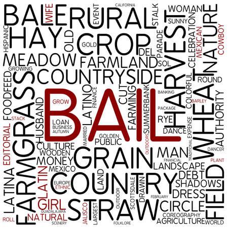 bail: Word cloud - bail