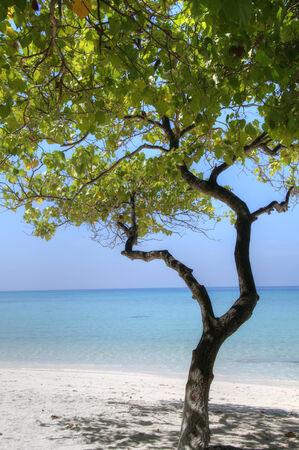 Idyllic beach on Maldives